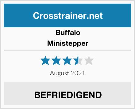 Buffalo Ministepper Test